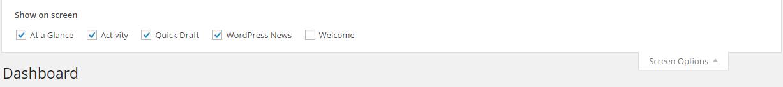 Opción de pantalla de WordPress