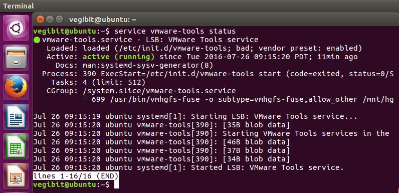 Confirm VMware Tools is running at the terminal