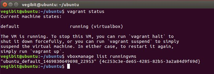 listing running vms vagrant and virtualbox