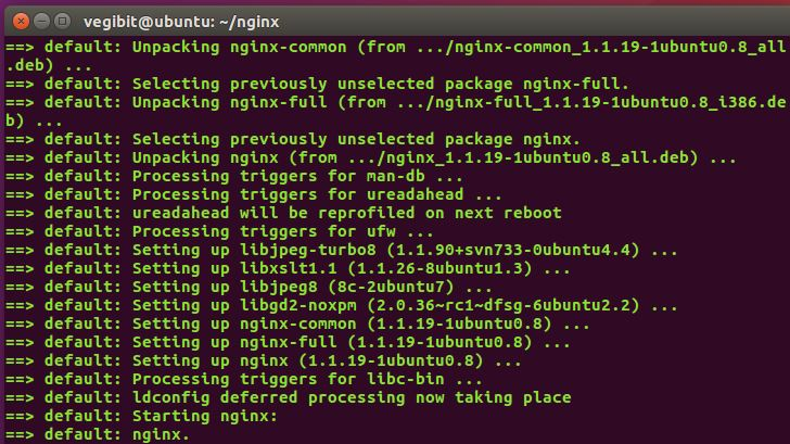 nginx is installing now