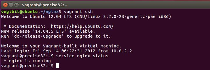 nginx is running on the VM now