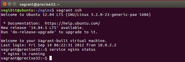 nginx se está ejecutando en la VM ahora