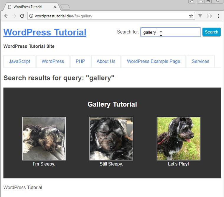 Resultado de búsqueda de formato de publicación personalizado wordpress