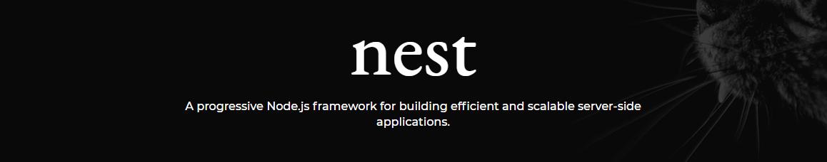 Nest_-_A_progressive_Node.js_web_framework_-_Googl_2018-05-04_14-51-28