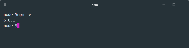 how to check npm version