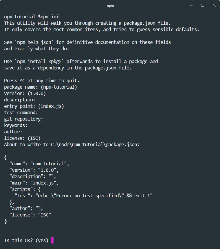 how to run npm init