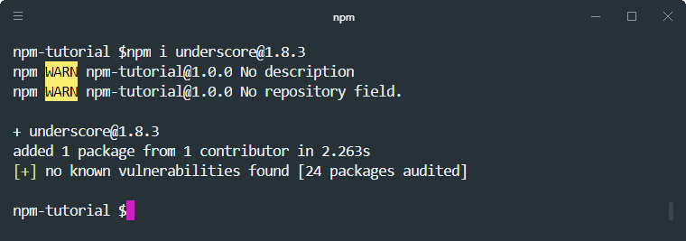 npm install specific version