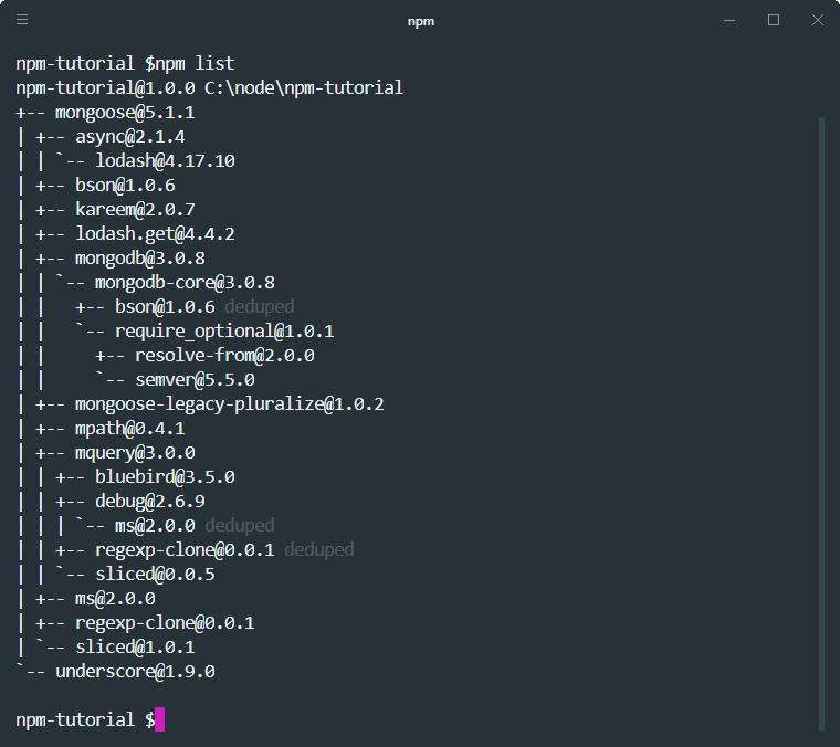 npm list