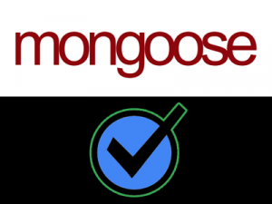 Mongoose Validation Examples