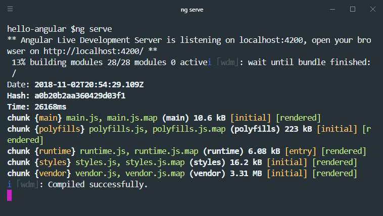 angularjs ng serve command