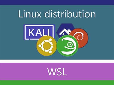 Linux Distros On WSL