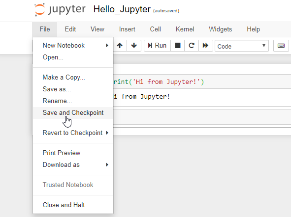 Jupyter Save And Checkpoint