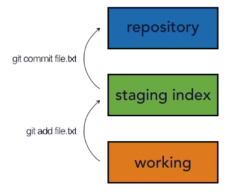 repository staging index working git