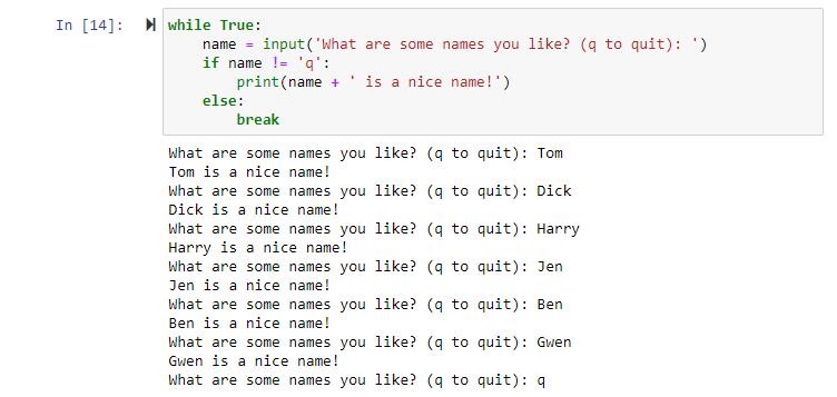 python input inside loop